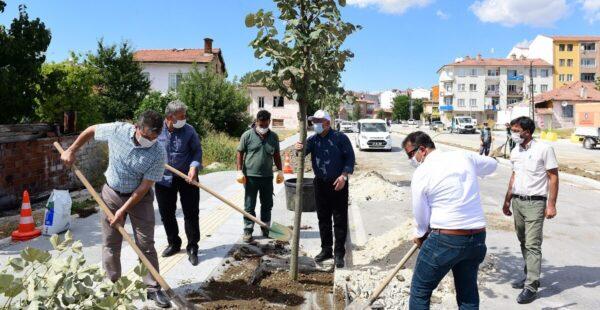 Recep Tayyip Erdoğan Caddesi 'ıhlamur' kokacak