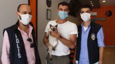 Amasya'da kaybolan kedi Çorum'da bulundu